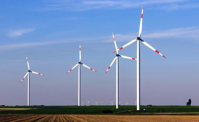 Google Hollanda'dan 10 Yıl Enerji Satın Alacak