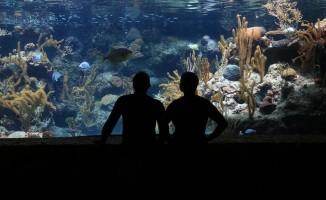 Avrupa'nın ilk denizaltı restoranı