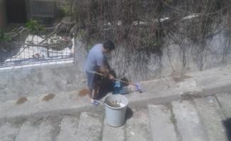 Sokaktaki Mamaları Süpüren Vatandaşa Ceza